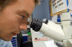 Laboratorio para detectar jamones fraudulentos