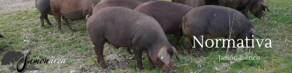 Normativa del ibérico sobre la calidad de los jamones y la clasificación de los cerdos.